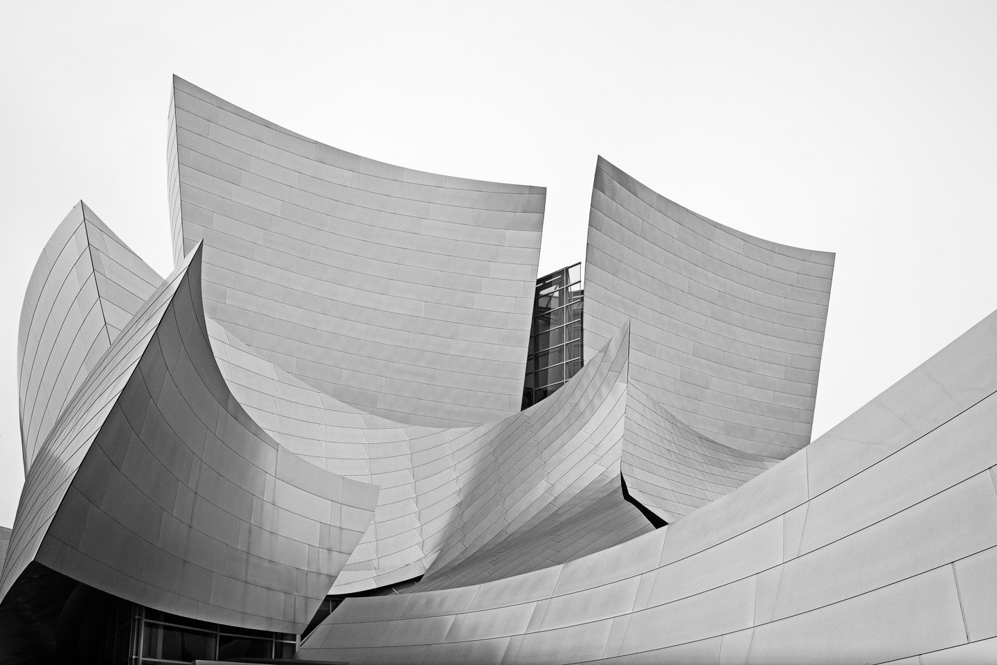 exterior aluminum panels drape the organic structure of the Walt Disney Concert Hall, designed by Frank Gehry, photographed by Jacob Rosenfeld